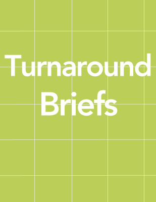 Turnaround Briefs thumb