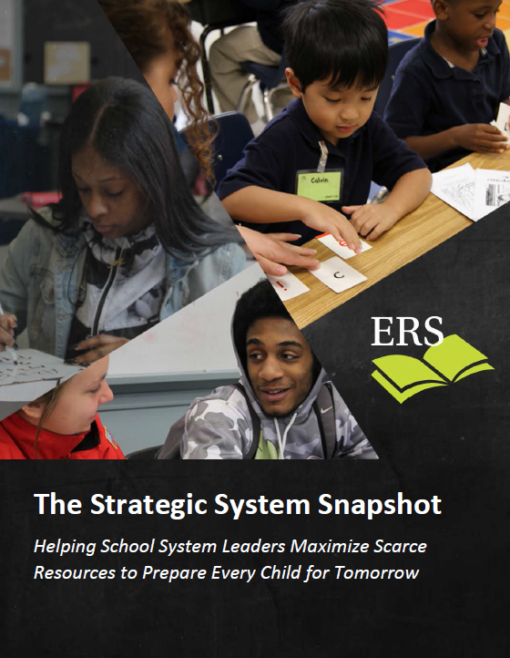 Strategic System Snapshot Overview cover image